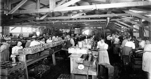 Image: The Cannery Olive Packing plant