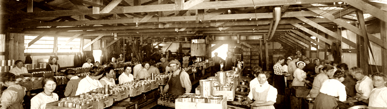 Photo: The Cannery Olive Packing Plant